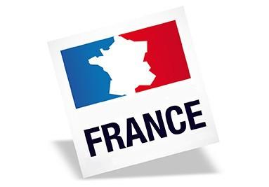 Artiste Peintre en France